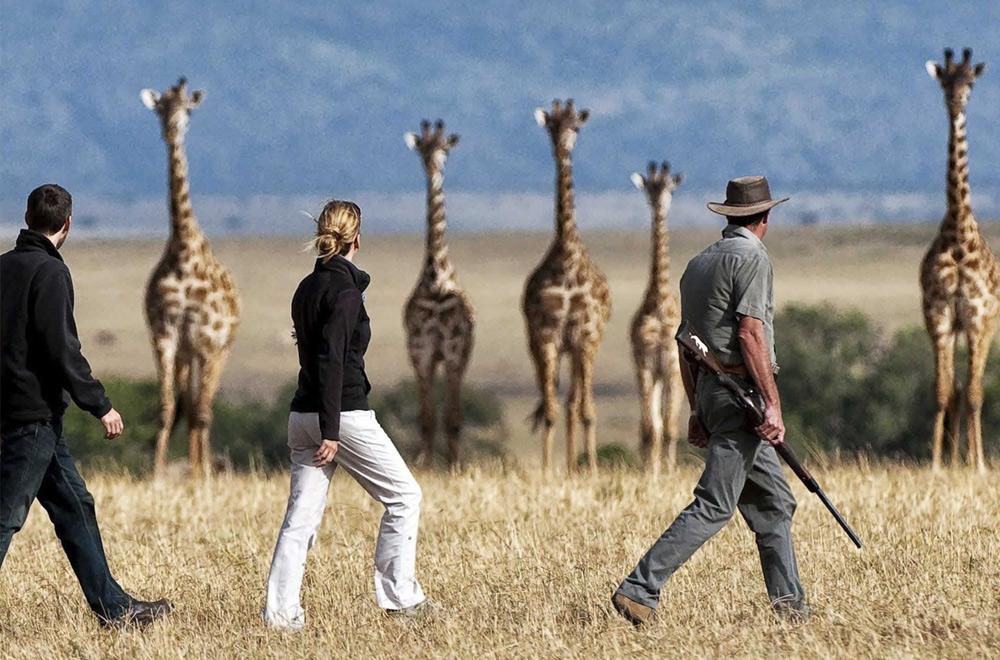 4 Days Tanzania Walking Safari